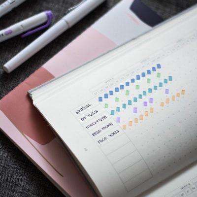 my-life-journal-wi30grrfbne-unsplash